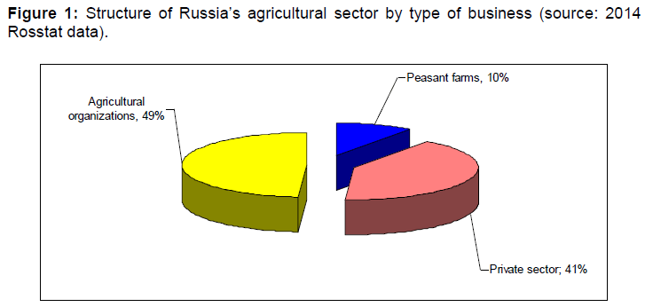 internet-banking-structure-russia-business